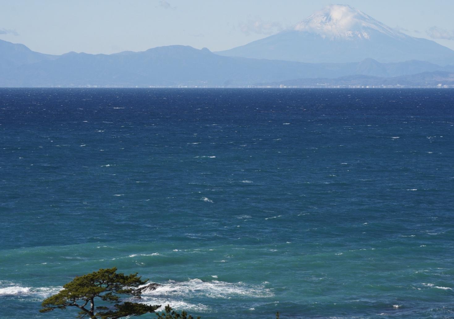 また,富士山を撮ってしまう...!